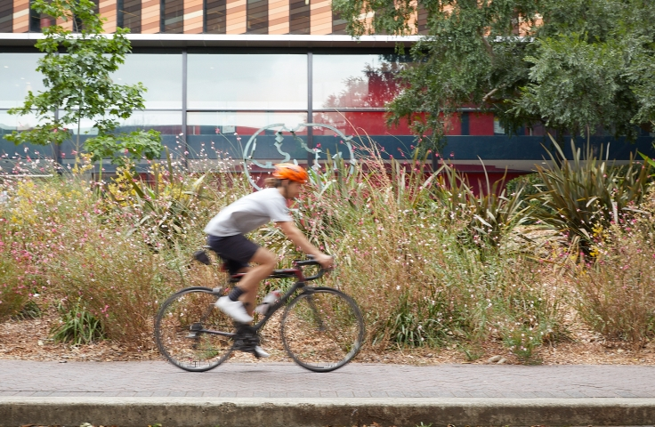 Cycling to UNSW