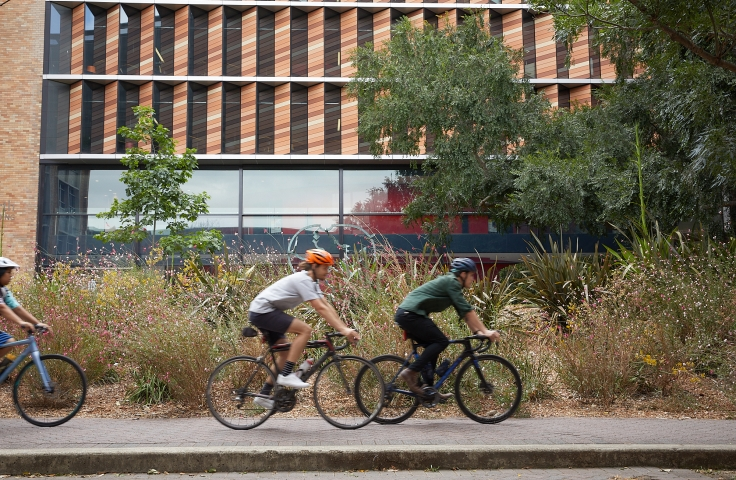 Cyclists on campus